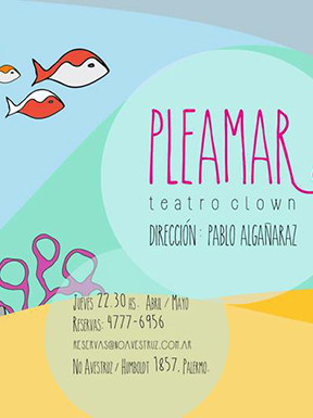 Pleamar | Obra de clown